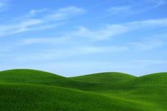 Gräslandskap Royaltyfri Fotografi