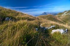 gräsliggandeberg Royaltyfri Fotografi