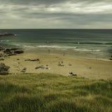 Gräsmattaöverkant av stranden fotografering för bildbyråer