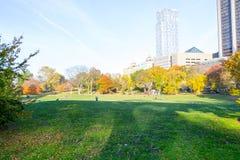 Gräsmatta i Central Park vid den övreöstliga sidan i den 100. gatan Royaltyfri Bild