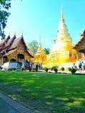 Gräsmatta inom Wat Phra Singh Thailand arkivbilder