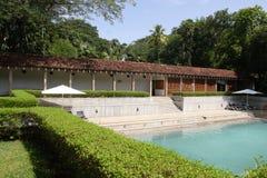 Gräsmatta och simbassäng fotografering för bildbyråer