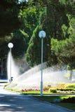 Gräsmatta som bevattnar spridaren i stadsmitt. Royaltyfri Foto