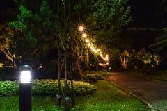 Gräsmattaljus och gångbana arkivbilder
