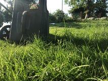 GräsmattamowerLawngräsklippningsmaskin på unplouged gräsmatta royaltyfria bilder