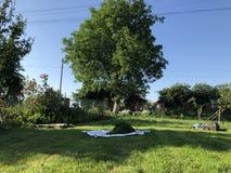 GräsmattamowerLawngräsklippningsmaskin på unplouged gräsmatta arkivfoton