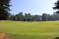 Gräsmattan i botaniska trädgården Arkivfoto