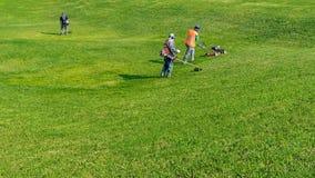 Gräsmattaomsorg Bitande gräs Royaltyfri Bild