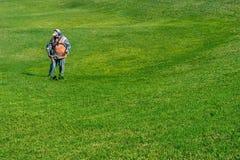 Gräsmattaomsorg Bitande gräs Arkivfoto