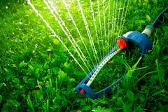 Gräsmattaspridare som kastrerar vatten över grönt gräs Arkivfoton