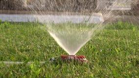 Gräsmattaspridaren som bevattnar grön gräsmatta, zoomar in och zoomar ut videoen stock video