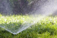 Gräsmattavattenspridare som besprutar vatten över gräs i trädgård på en varm sommardag Automatiska bevattna gräsmattor Arbeta i t arkivfoton