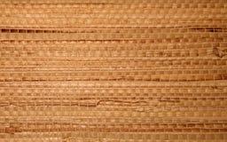 Gräspapper Arkivbild