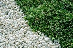 gräspebbles Arkivbild