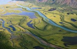 Gräsplan arktisk delta Arkivbilder