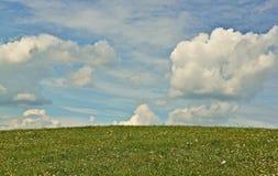 Gräsplan-blått horisont Royaltyfri Foto