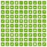 gräsplan för grunge för 100 ecoomsorgsymboler fastställd royaltyfri illustrationer