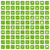 gräsplan för grunge för 100 exotiska djursymboler fastställd Royaltyfria Foton