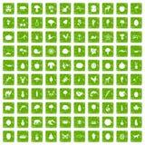 gräsplan för grunge för 100 levande natursymboler fastställd Fotografering för Bildbyråer