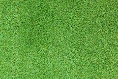 Gräsplan fejkar gräsbakgrund royaltyfri bild