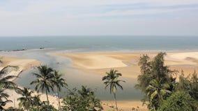 Gräsplan gömma i handflatan djungeln på bakgrunden av den sandiga havskusten, fjärden och havet arkivfilmer