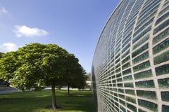 Gräsplan glasad vägg Royaltyfri Fotografi