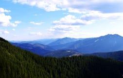 Gräsplan i bergen arkivbild
