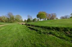 Gräsplan i vår Arkivbilder