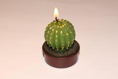 Gräsplan kaktus-formad stearinljus Royaltyfri Fotografi