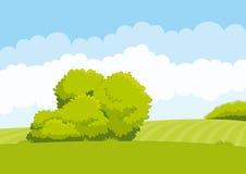 Gräsplan landskap Royaltyfri Bild