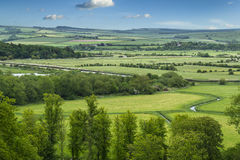 Gräsplan och angenämt landskap arkivbilder