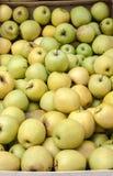 Gräsplan- och gulingmarknadsäpplen Royaltyfria Bilder