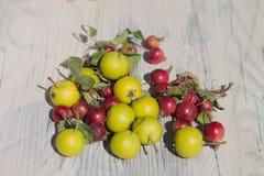 Gräsplan och röda frukter på träbakgrund Royaltyfri Bild