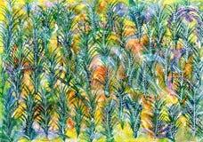 Gräsplan på gul bakgrund för abstrakt begrepp för modell för granträd Arkivbild