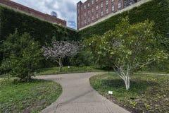 Gräsplan parkerar Arkivfoton