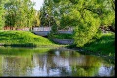 Gräsplan parkerar med träd och floden Solig ferie arkivbilder