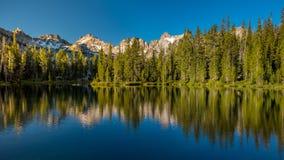 Gräsplan sörjer trädreflexion i en hög mountian sjö Royaltyfria Foton