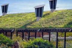 Gräsplan 'som bor' taket arkivfoto