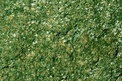 Gräsplan tonad stentextur Royaltyfri Bild
