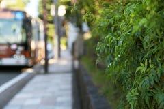 Gräsplan vid trottoaren Arkivbild