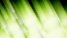 gräsplanbakgrund för vit 3d eps10 blommar yellow för wallpaper för vektor för klippning för rac för orange modell vaddera ric häf Arkivbilder