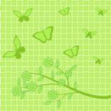 Gräsplanblommor och fjärilar på grön bakgrund Royaltyfri Illustrationer