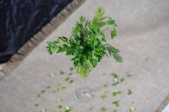 gräsplaner Royaltyfri Fotografi