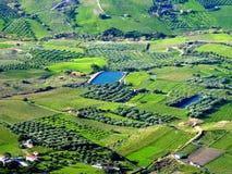 Gräsplanfält Royaltyfri Fotografi