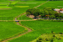 Gräsplanfält i den Vietnam byn Fotografering för Bildbyråer