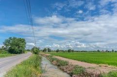 Gräsplanfält med blå himmel Royaltyfria Bilder