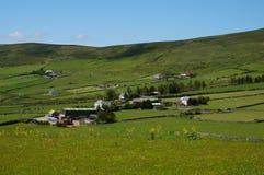 Gräsplanfält med blå himmel royaltyfri bild