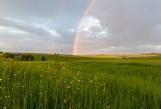 Gräsplanfält med regnbågen Fotografering för Bildbyråer