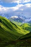 Gräsplanfält och kullar som leder till snö-täckte berg Arkivfoto