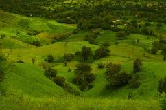 Gräsplanfält på ett berg slope-3 Arkivbild